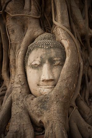 angkor wat: Head of Sandstone Buddha in The Tree Roots at Wat Mahathat, Ayutthaya, Thailand