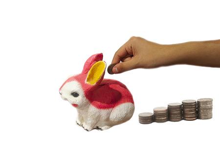 Piggy bank, ceramic rabbit