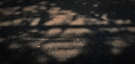 The shadow of the sun that fell on the road surface