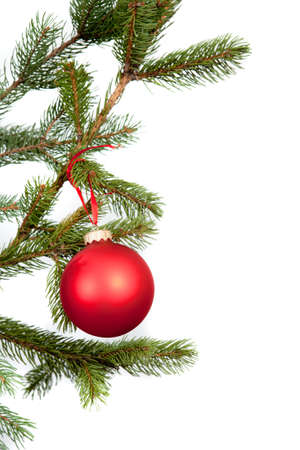 Christmas tree branches border isolated Stock Photo - 8476005