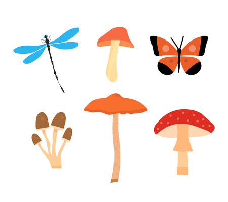 A set of four species of fungi and two insects. 版權商用圖片 - 96168135