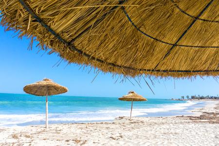 Landscape of parasols on the beach of Djerba in Tunisia