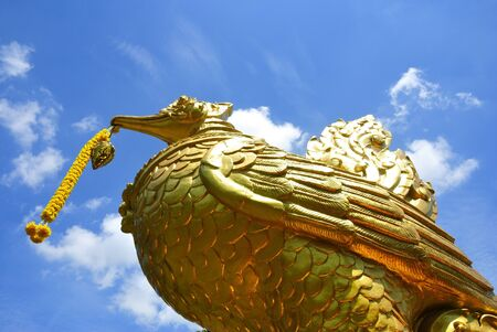 gold: Gold swan