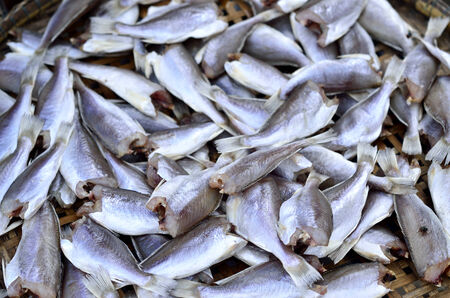 Fish dry in food market