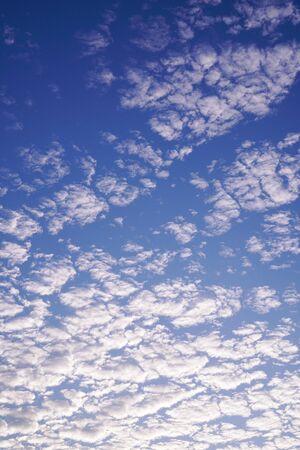 blue sky and Altocumulus cloud. 免版税图像