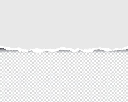 Papier déchiré avec bords déchirés et transparent