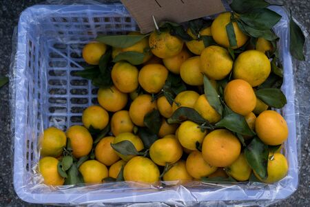 Tangerines on counter for sale.Tangerines on counter for sale.