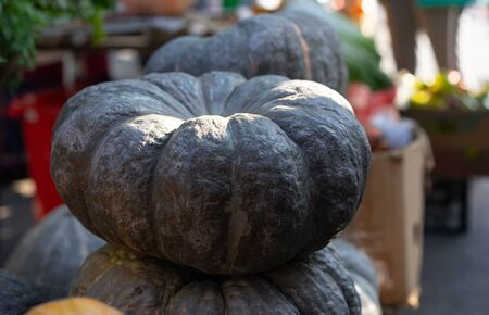Pumpkin at the fair for sale.Pumpkin at the fair for sale