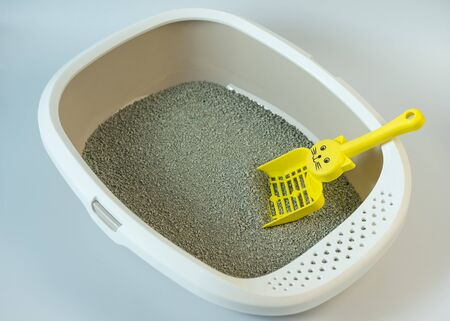 Toilet for pets on a white background
