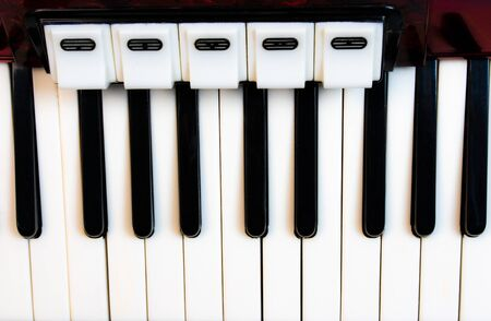 White and black keys of the accordion