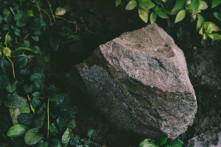The stone lies on the ground Stock fotó