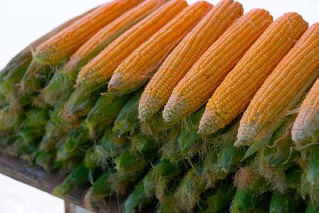 Plenty of fresh corn for sale Stock fotó