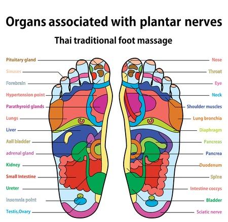 Thai traditional foot massage 版權商用圖片