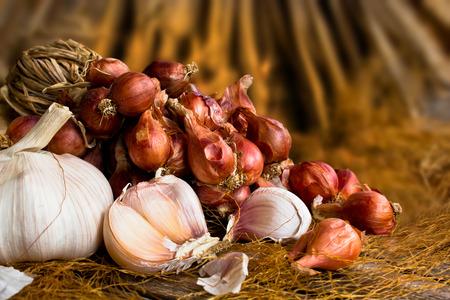 fresh garlic: Vintage garlic and onion in still life style