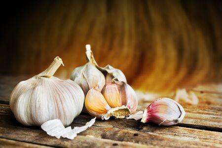 Vintage garlic in still life style Imagens