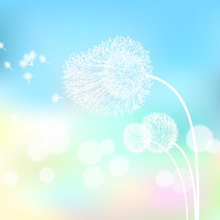 White flower in nature. Illustration