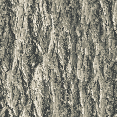 Texture bark shape with seamless background.