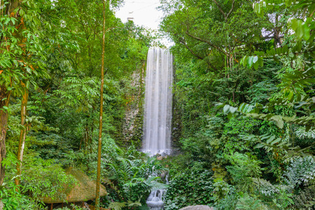 Big Vertical Waterfall in the Rain Forest