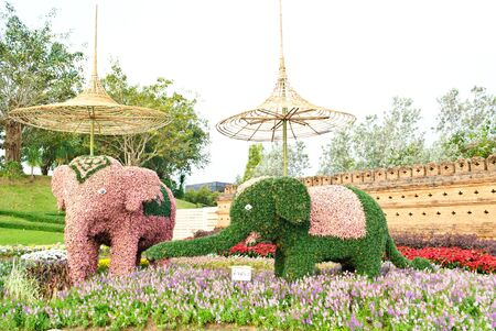 horticultural: CHIANGMAI THAILAND - DECEMBER 4 : Mascots show in The International Horticultural Exposition Ratchaphruek 2011. Even on 14 december 2011 - 14 march 2012. On December 4,2011 in Chiangmai, Thailand.