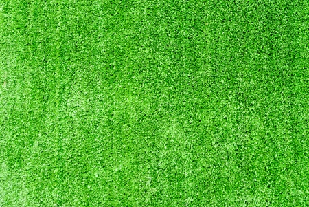 Artificial Grass Field Texture