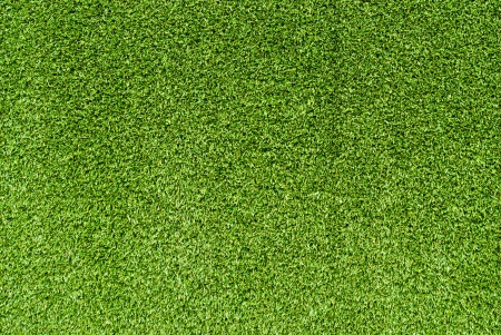 Artificial Grass Field Texture