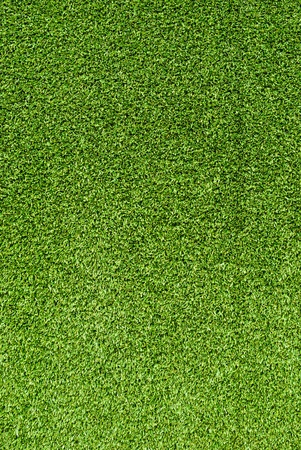 Artificial Grass Field Texture Stock Photo - 11572531