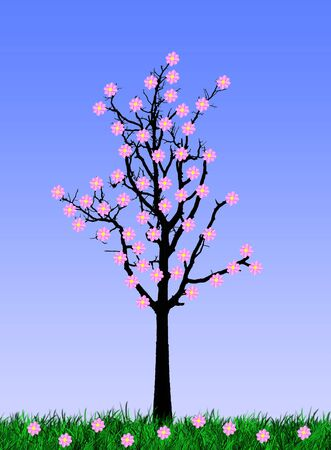 flower tree photo