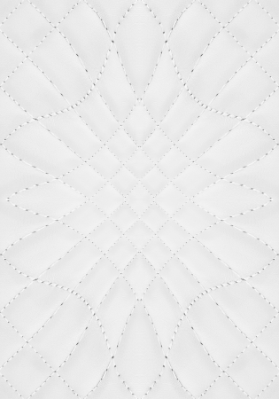 white leather background photo