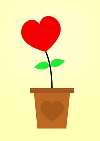 heart flower in pot Stock Photo - 17455462
