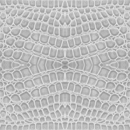 peau cuir: couleur blanche de fond de cuir crocodile Banque d'images