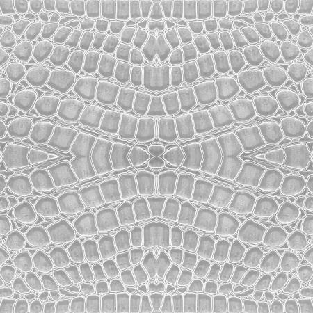 cocodrilo: el color blanco de fondo de cuero de cocodrilo