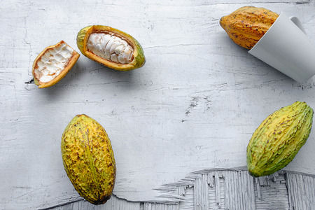 Fresh cocoa fruit on a white wooden background.