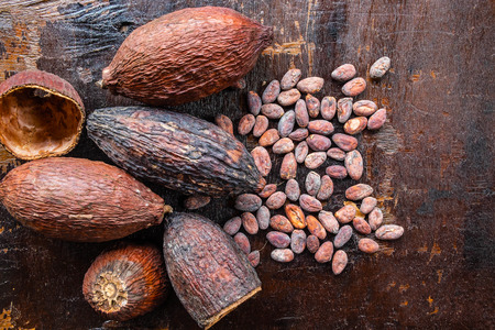 Dried cocoa and cocoa seeds on a wooden background
