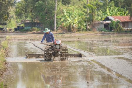 Thai Farmer plowman using tiller tractor  in rice field Stock Photo