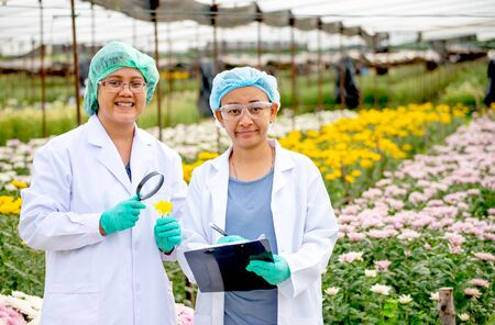 Two scientist women with lab gown and hair cover stand in front of multi-color flowers. They are also smiling with the concept of good experiment of flower business. 写真素材