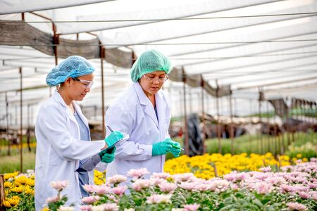 Two scientist women work together in experimental field of flower garden, one woman check the product and the other one record those result data.