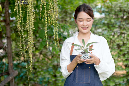 Beautiful Asian girl hold pot of plant and look at it, also stand in front green wall in her house. Sustainable with small business relate to plant concept.