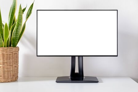 Blank monitor on table with green houseplant