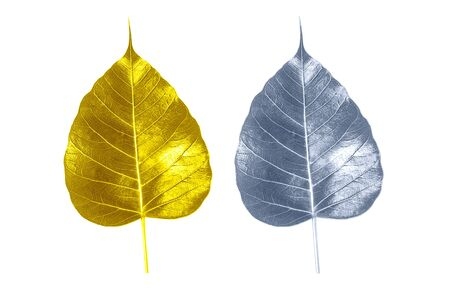 Golden bodhi leaves with silver and green on a white background