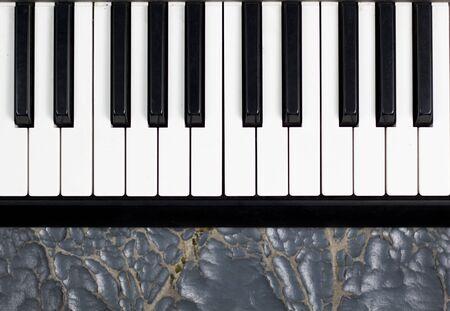 piano  White background, blank key