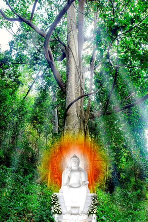 The Buddha sat under the tree Banco de Imagens