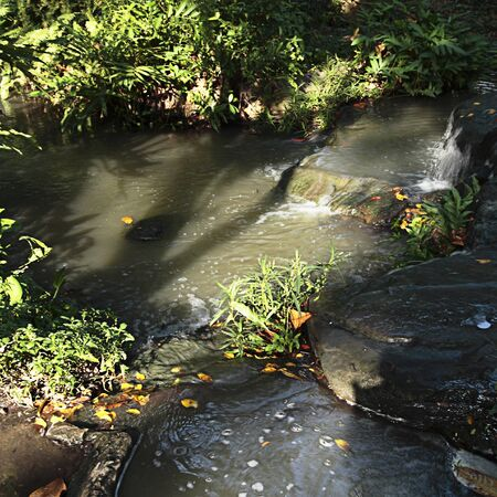 cours d eau: Small watercourse running peacefully Banque d'images