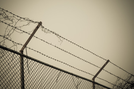 barbed wire as barricade against trespasser and quarantine on a gloomy cloudy sky.