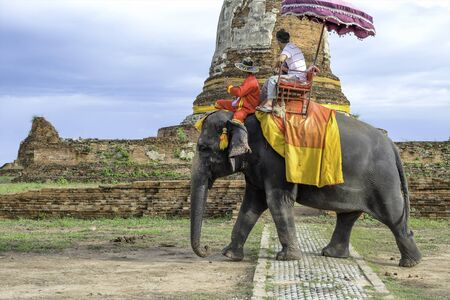 tourist tourists: Tourists on elephant ride tourism Stock Photo