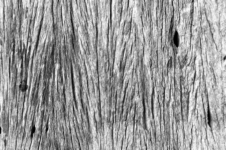 black wood texture: White and black wood texture Stock Photo