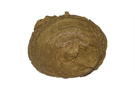 dung: buffalo dung. Clipping path Stock Photo