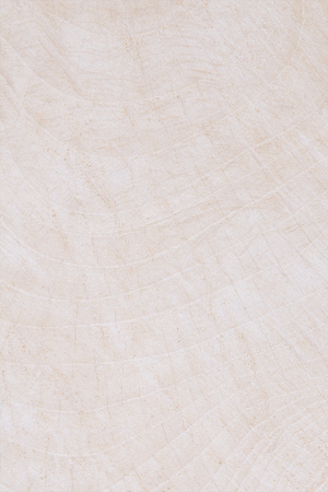 old backgrounds: White Wood background