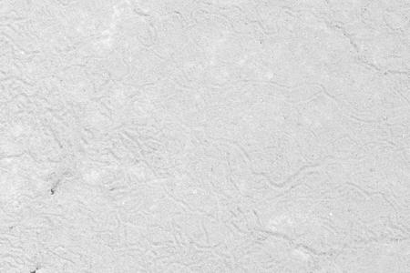 sequias: Blanco sequ�a suelo textura agrietada