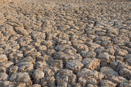 sequias: soil drought cracked texture Foto de archivo