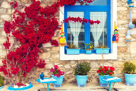 bougainvillea flowers: Beautiful close up of a traditional mediterranean house